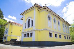 O Museu Florestal Otavio Vechi é o único da América Latina especializado em madeira